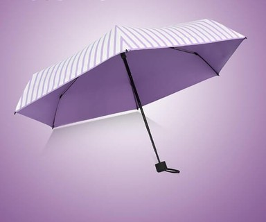 Light Weight Folding Umbrella - Purple