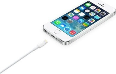 Apple Lightning to USB Cable MD819