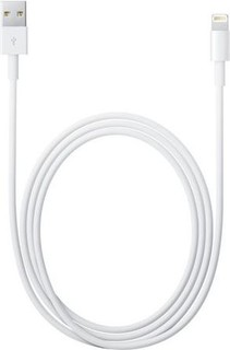 Apple Lightning to USB Cable MD819AM