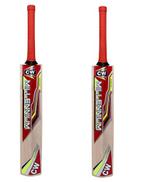 Cricket World CW Millennium Cricket Kashmir Willow Bat Set of 2 Leather Ball Play Fast Shipping