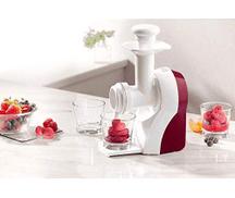 rossmann Fruit ice cream sorbet maker machine