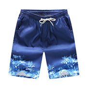 Other Summer Men's Shorts Beachwear Pants Beach Resort Fast Dry Surf Swim Coconut Trees Printted Size XL