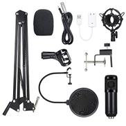 Docooler BM800 Condenser Microphone Lit Pro Audio Studio Recording & Brocasting Adjustable Mic Suspension Scissor Arm Pop Filter